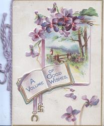 A VOLUME OF GOOD WISHES on book shaped plaque, rural inset below purple pansies, horse-shoe & swastika