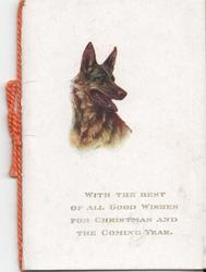 WITH THE BEST OF ALL GOOD WISHES FOR CHRISTMAS AND THE COMING YEAR picture of German Shepherd above