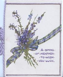 A SPRIG OF HEATHER TO WISH YOU LUCK bunch of heather tied with tartan ribbon