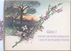 GUID! SINCERE GUID WISHES.....sprig  of heather below trees in evening rural scene