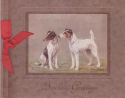 BIRTHDAY GREETINGS opt. in brown below inset of 2 dogs looking left, one seated, red ribbon applique
