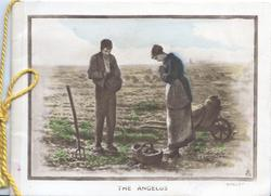 THE ANGELUS man & woman pray in potato field