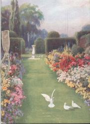 no front title, garden scene, three doves in foreground