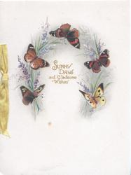 SUNNY DAYS AND GLADSOME WISHES in gilt surrounded by 5 butterflies and lavender