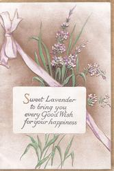 SWEET LAVENDER TO BRING YOU EVERY GOOD WISH FOR YOUR HAPPINESS on white plaque, purple ribbon & lavender behind