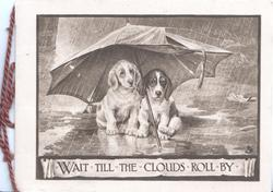 WAIT TIL THE CLOUDS ROLL BY  sepia inset, two sad dogs shelter under umbrella