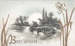 BEST WISHES in gilt below moonlit watery rural scene, gilt leaves & bridge & 2 swans