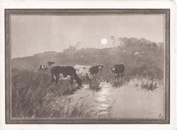 no front title, sepia moonlit rural scene, cows in marsh