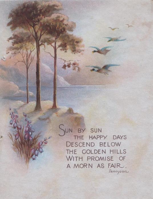 SUN BY SUN ...heather, loch & hills scene, ducks fly in