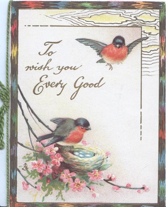 TO WISH YOU EVERY GOOD in gilt,  bluebird-of-happiness on nest, another flies