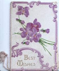 BEST WISHES in gilt below bunch of violets, violet marginal design
