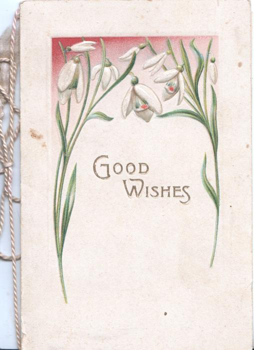 GOOD WISHES in gilt below snowdrops