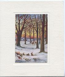 no front title, winter woodland scene, 3 rabbits & 2 deer, trees, evening scene