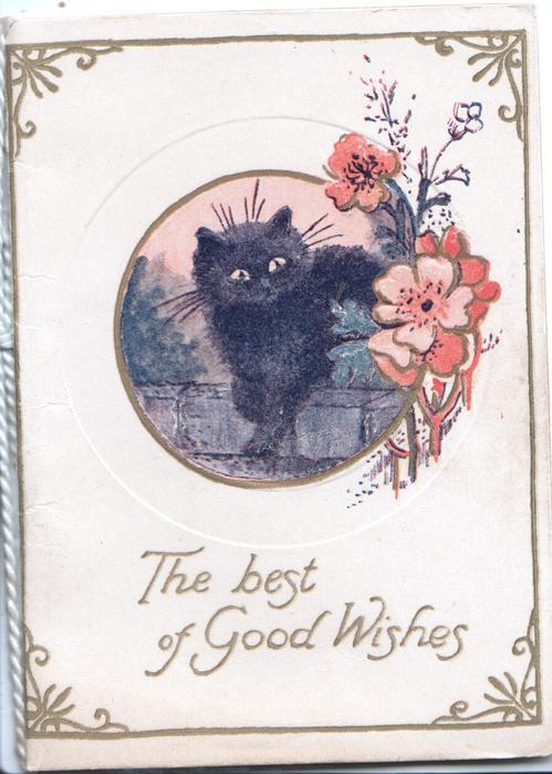 THE BEST OF GOOD WISHES in gilt, circular inset black cat sits on wall, pink blossom right,