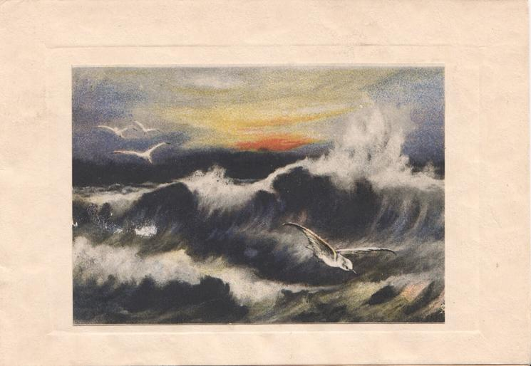 no front title, seascape, 4 gulls fly over high waves