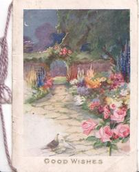 GOOD WISHES below paved path, roses & other highly coloured flowers, 2 pigeons front