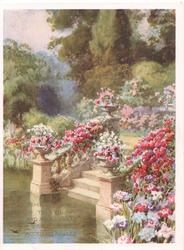 TIME BE GOOD....masses of multicoloured flowers on either side of steps leading down to water, trees behind