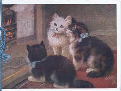 BEST WISHES (very faint) 3 kittens before blazing fire