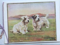 ALL GOOD WISHES(very faint), 2 white scotch terriers on grass looking front right