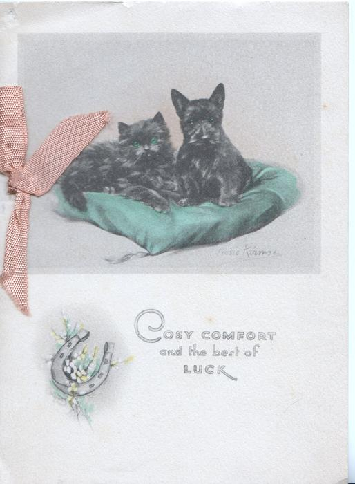 COSY COMFORT AND THE BEST OF LUCK black cat and black scotch terrier on a green cushion