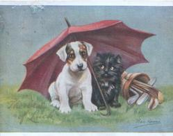 THE BEST OF LUCK white puppy with brown eye patches & black cat shelter under pink umbrella beside golf clubs