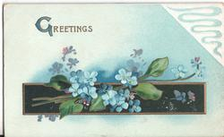 GREETINGS forget-me-nots
