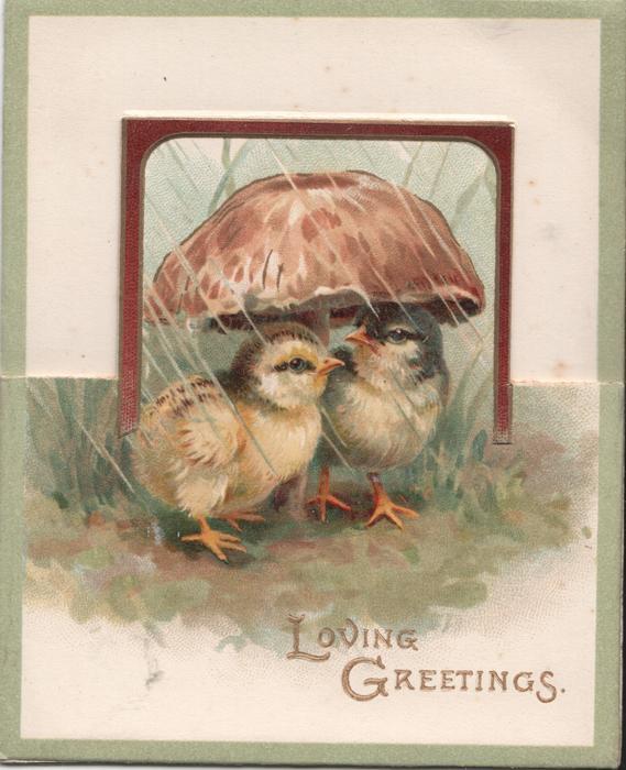 LOVING GREETINGS two chicks under umbrella
