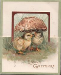 LOVING GREETINGS two chicks under umbrella