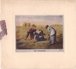 THE GLEANERS three women work in farm field