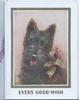 EVERY GOOD WISH in gilt below head & sholders study of black scotch terrier