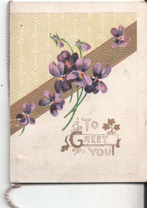 TO GREET YOU below violets
