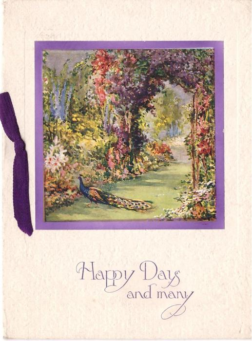 HAPPY DAYS AND MANY opt. in purple, peacock on grass path between floral beds, clematis arbor behind