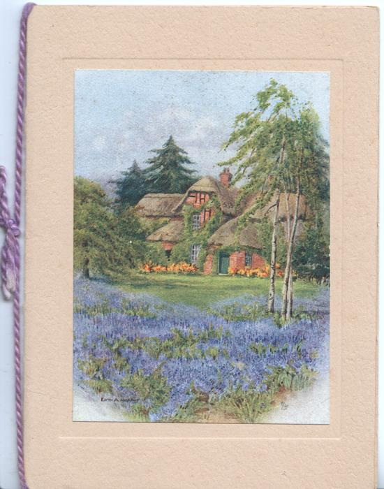 no front title, inset mid-distant view of large thatched house behind lawn, carpet of bluebells front