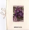 GREETINGS opt. in black below small oblong inset with posy of violets