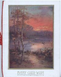 EVERY GOOD WISH below late evening inset, stream, silver birch, flying duck in rural scene