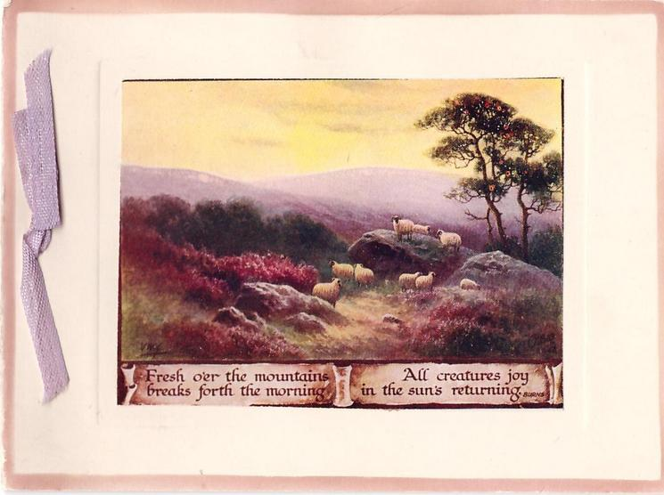 FRESH O'ER THE MOUNTAINS .... on banner below inset of sheep in Highlands with hills behind, yellow sky
