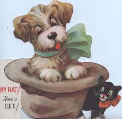 MY HAT! HERE'S LUCK! puppy wears green bow in upside-down hat, kitten below