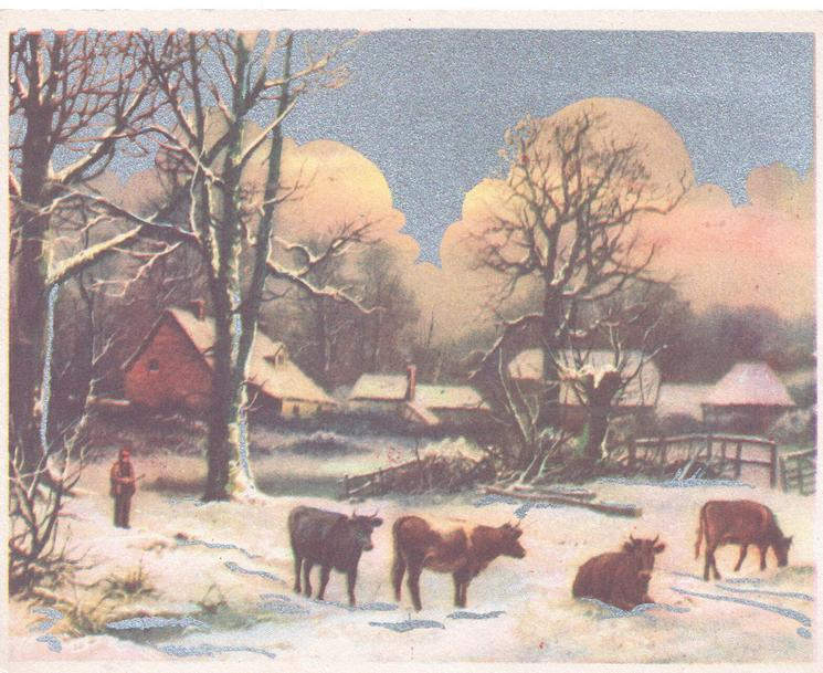 no front title, snow scene, 4 cows, farm & buildings behind, person stands left