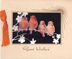 GOOD WISHES in gilt below 4 orange birds on branch, inset on black, gilt sun upper right