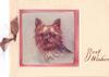 BEST WISHES in brown right of Yorkshire terrier insert with pink border