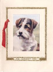 TO GREET YOU on lower gilt border framing terrier