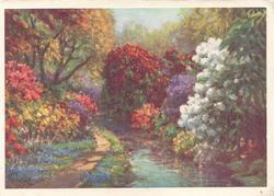 no front title, path by stream, masses of multicoloured rhododendrons