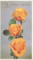 21ST. BIRTHDAY GREETING 3 orange roses, pale purple  background