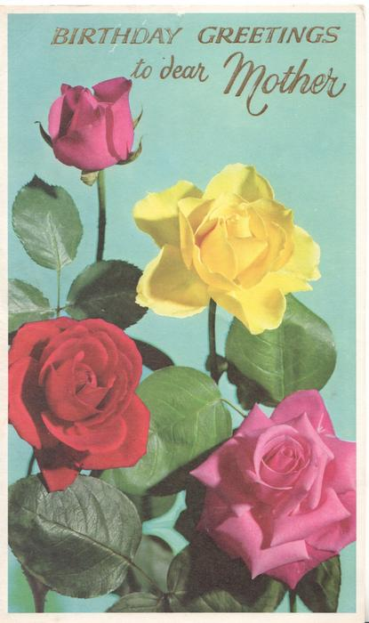 BIRTHDAY GREETNGS TO DEAR MOTHER 2 pink roses one red & one yellow blue/green background