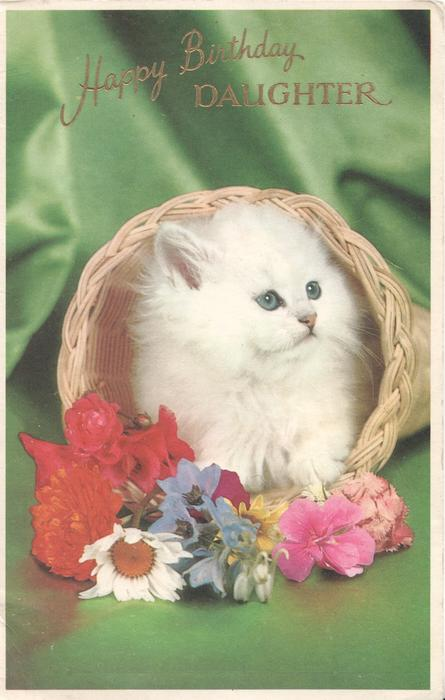 HAPPY BIRTHDAY DAUGHTER in gilt abovecat in wicker basket behind many coloured flowers, deep green background