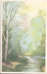no front title, misty rural scene, silver birch on either side of stream
