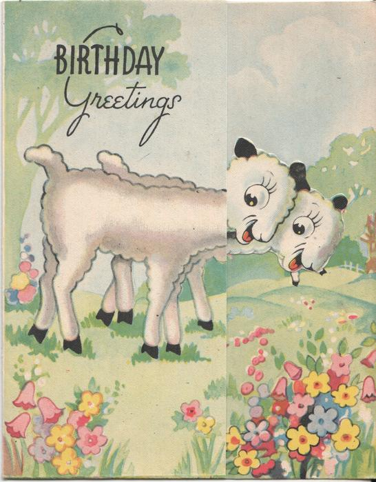 BIRTHDAY GREETINGS two lambs look excitedly at flowers