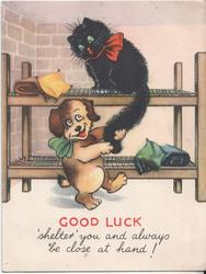 GOOD LUCK 'SHELTER' YOU AND ALWAYS BE CLOSE AT HAND! cat and dog on bunk beds