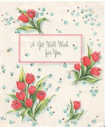 A GET WELL WISH FOR YOU on pink bordered white plaque among pink tulips & blue forget-me-nots