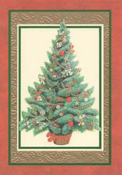 no front title, inset of decorated xmas tree set in many coloured marginal design